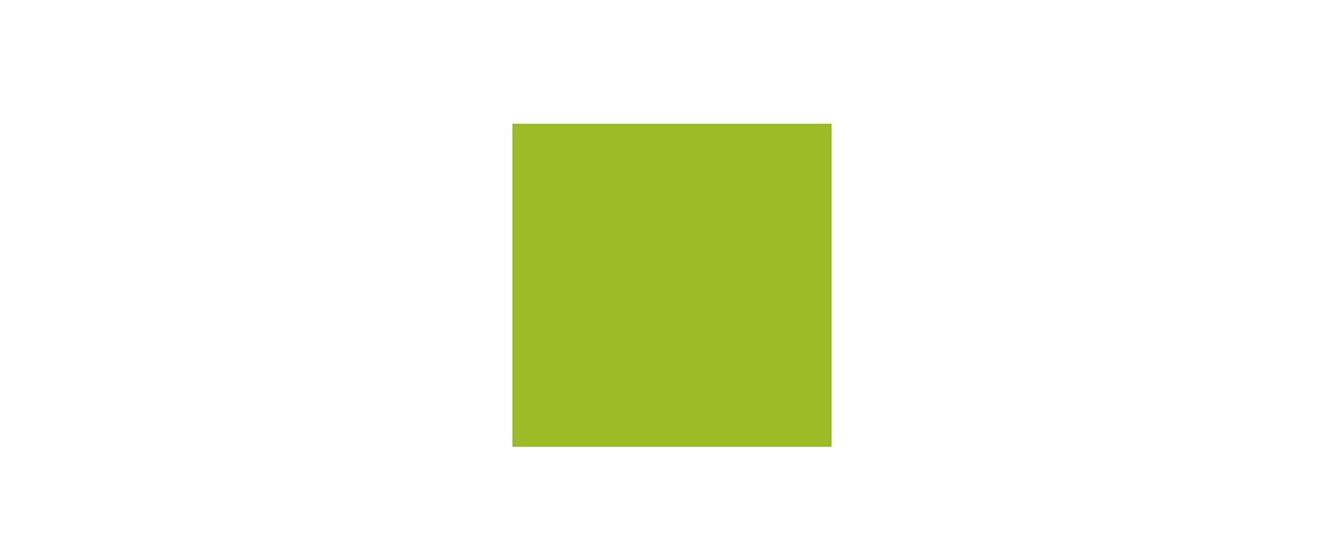 rzr 01