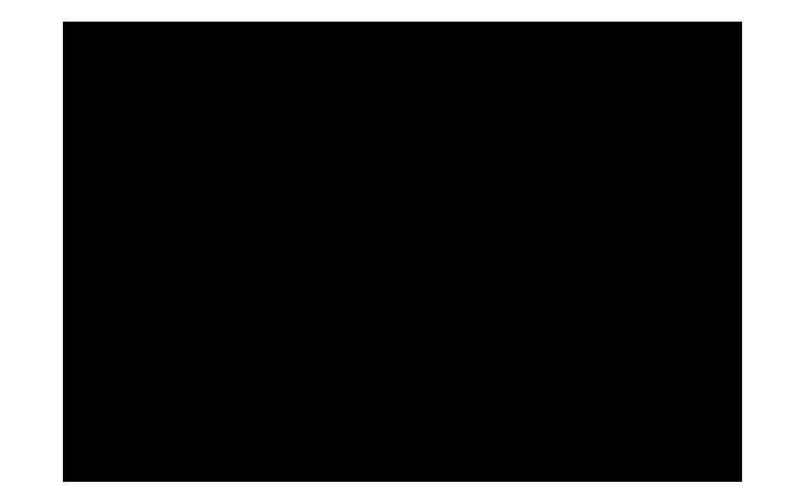 rzrwildtreks